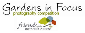 Garden in Focus 2011